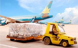 Noibai Cargo (NCT) chốt quyền nhận cổ tức đợt 1/2020 bằng tiền tỷ lệ 30%