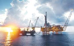 PVN: Năm 2020 đạt tổng lãi trước thuế 17.500 tỷ đồng, phát hiện được 2 mỏ khí mới Kèn Bầu và Sói Vàng