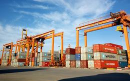 Chính phủ chỉ đạo xử lý tình trạng tăng giá thuê tàu và container