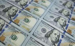 Dự báo năm 2021: Các công ty quản lý quỹ sẽ mua gì?