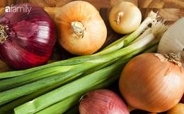 Hành lá, hành tía và hành tây đỏ: Loại nào tốt cho sức khỏe hơn?