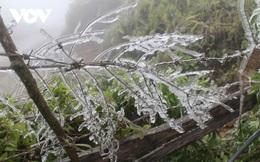Đầu tuần Bắc Bộ tiếp tục rét đậm, Trung Bộ có mưa