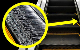 Đi trung tâm thương mại bao năm nay nhưng giờ tôi mới biết bàn chải ở thang cuốn không phải để đánh giày!