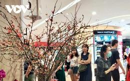 Hoa đào nhập khẩu hút khách chơi Tết tại TP HCM