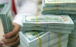 Hàm ý gì đằng sau việc điều chỉnh phương án mua ngoại tệ của Ngân hàng Nhà nước?
