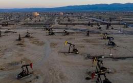 """Mỹ vẫn có tầm ảnh hưởng lớn trên thị trường dầu mỏ dù ông Biden không """"ồn ào"""" hơn ông Trump"""