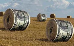 """""""Soi"""" biến động giá những cổ phiếu có thị giá """"đắt đỏ"""" nhất sàn chứng khoán"""
