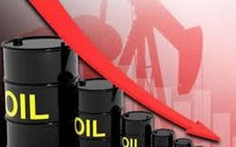 Nguồn thu từ xuất khẩu xăng dầu năm 2020 giảm mạnh