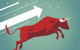 Thị trường thăng hoa ngoài mong đợi, VNDIRECT sửa kịch bản dự báo, cho rằng VN-Index có thể lên tới 1.330 điểm trong năm 2021