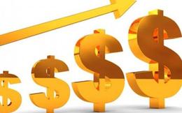 Điểm danh những doanh nghiệp chốt quyền nhận cổ tức bằng tiền, cổ phiếu và cổ phiếu thưởng tuần 25/1-29/1