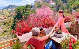 Ngôi nhà nhỏ yên bình sở hữu khu vườn đẹp như xứ sở thần tiên giữa lưng chừng đồi ở Đà Lạt