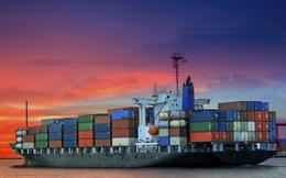 Vận tải Biển Bắc (NOS) tiếp tục lỗ 225 tỷ đồng trong năm 2021, đánh dấu chuỗi 9 năm thua lỗ liên tiếp
