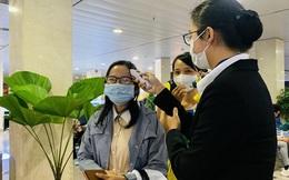Doanh nghiệp TP Hồ Chí Minh dừng các tour du lịch đến Hải Dương, Quảng Ninh