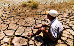 Việt Nam nằm trong nhóm nước đầu tiên đệ trình NDC cam kết chống biến đổi khí hậu