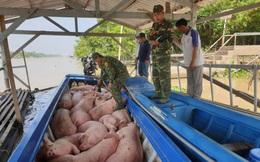 Làm rõ việc xuất lậu lợn và các sản phẩm từ lợn qua biên giới