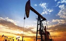 Giá dầu vọt lên cao nhất gần 1 năm do OPEC+ có thể tiếp tục kiềm chế sản lượng trong tháng 2