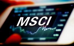 Việt Nam trở thành thị trường lớn nhất rổ MSCI Frontier với tỷ trọng hơn 30%