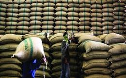 Rắc rối trên thị trường gạo thế giới khi việc vận chuyển từ Ấn Độ chậm trễ đúng lúc nhu cầu tăng mạnh