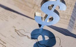 Tài chính Hoàng Minh (KPF) chào bán 36 triệu cổ phiếu tăng vốn điều lệ lên gấp 3
