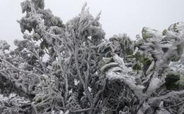 Cuối tuần miền Bắc tiếp tục rét đậm, vùng núi cao dưới 0 độ C