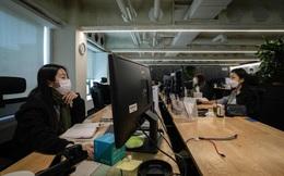 [Khảo sát] Đời sống công sở sẽ khác nhiều sau đại dịch