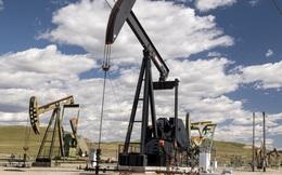 Giá dầu sẽ diễn biến thế nào sau khi đạt mức cao nhất nhiều năm?