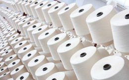 Duy trì biện pháp chống bán phá giá đối với sợi dài làm từ polyester nhập khẩu
