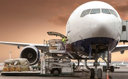 """Các hãng bay """"đóng băng"""", thậm chí Vietnam Airlines đã âm vốn nhưng một số công ty logistics hàng không vẫn sống khỏe lãi cao"""