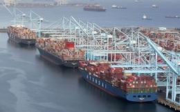 Công bố chỉ số hoạt động cảng container 2021: 2 cảng lớn của Mỹ đứng cuối bảng, Việt Nam có 3 cảng thuộc top 50