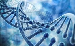 Việt Nam sẽ có trung tâm giải mã gene lớn nhất Đông Nam Á