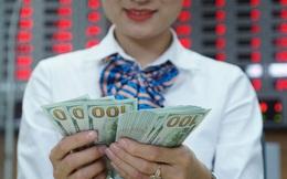 Kiều hối ồ ạt về TP HCM dịp cuối năm, lập kỷ lục 6,1 tỉ USD