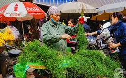 """Đến tận làng trồng mùi già nghe kể về tục tắm đêm 30 của người Hà Nội để """"lấy thơm"""" cho năm mới là như thế nào"""