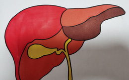 Sau khi ngủ dậy, cơ thể có 3 biểu hiện bất thường này thì có thể gan của bạn đang có vấn đề cần đi khám sớm