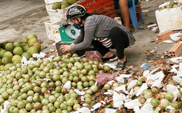 Sài Gòn chiều 30 Tết trái cây xổ đầy đường nhiều hơn cả hoa, người bán buồn thiu than vãn: Rẻ như cho mà không ai mua con ơi!