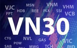 Lợi nhuận nhóm VN30 vẫn tăng trưởng dương trong năm Covid thứ nhất