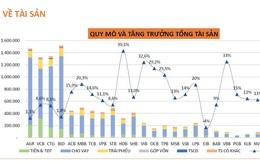 Toàn cảnh ngân hàng 2020 (kỳ 1): Tăng trưởng tổng tài sản giảm nhẹ so với cùng kỳ 2019
