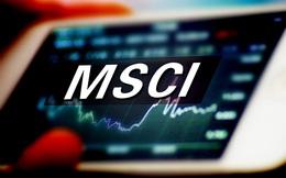 Tập đoàn Cao su Việt Nam (GVR) lọt rổ MSCI Frontier Markets Index trong kỳ review quý 1/2021