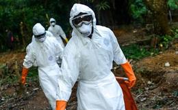 Vẫn chưa 'thanh toán' xong COVID-19, dịch Ebola bùng phát trở lại ở châu Phi