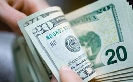 Ngân hàng Nhà nước điều chỉnh tần suất mua ngoại tệ