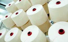 Ấn Độ mở phiên điều trần điều tra chống bán phá giá sợi polyeste Việt Nam