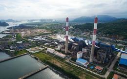 Cơ điện lạnh REE tiếp tục bán bớt 5 triệu cổ phiếu, giảm tỷ lệ sở hữu tại Nhiệt điện Quảng Ninh