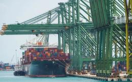 Chi phí vận chuyển hàng hóa quốc tế tăng vọt gây khó cho phục hồi kinh tế