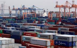 Điều gì xảy ra sau khi tốc độ tăng giá cước container chững lại sau Tết?