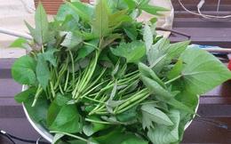 """Chuyên gia dinh dưỡng: Lá rau khoai lang được mệnh danh là """"rau trường thọ"""" chủ yếu nhờ vào 6 tác dụng"""