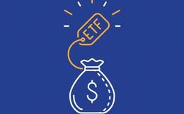 2 quỹ ETF ngoại với quy mô 900 triệu USD sẽ cơ cấu danh mục ra sao trong tháng 3?