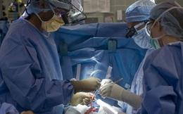 Trường hợp hy hữu: Tử vong do ghép phải phổi hiến nhiễm nCoV