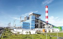 Vượt xa kế hoạch, Nhiệt điện Phả Lại (PPC) lại sắp chi 370 tỷ đồng tạm ứng cổ tức đợt 2/2020