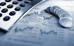 MST Invest thông qua phương án phát hành riêng lẻ 30 triệu cổ phiếu, tăng vốn gần gấp đôi
