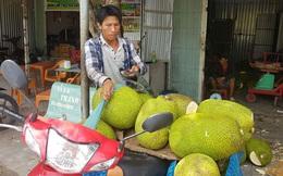 Sau Tết, trái cây được giá