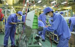 Đầu tư khu công nghiệp 1.200 tỷ đồng giáp Đồng Nai, Bình Thuận